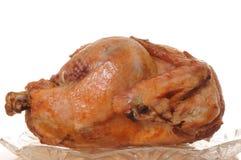 Roast Turkey. Beautifully browned whole roast turkey isolate on white royalty free stock photography