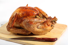 Roast turkey high angle view stock images