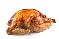 Roast turkey. On white background, shallow focus stock photo