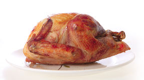 Roast turkey on a plate Royalty Free Stock Photo