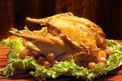 Roast turkey Stock Photography