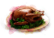 Roast turkey with stuffing on a platter sketch Stock Photography