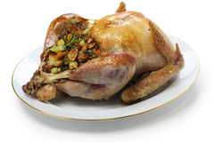 Roast turkey with stuffing. Thanksgiving day dinner Stock Photography