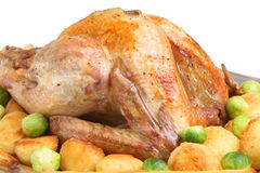 Roast Turkey with Vegetables. Roast turkey with roast potatoes, parsnips and sprouts Stock Photos