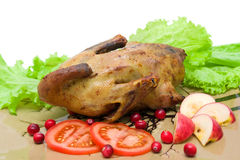 Roast wild duck with apples, tomatoes and cranberries. Royalty Free Stock Photo