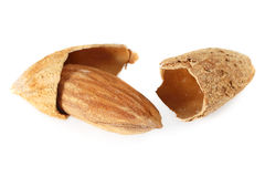 Roasted almond Royalty Free Stock Photos