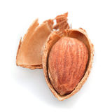 Roasted almond nut Royalty Free Stock Photography