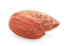Roasted almond nut Stock Images