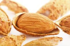 Roasted almonds Stock Photos