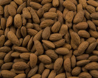 Roasted Almonds. Fresh pile of roasted almonds Stock Photography