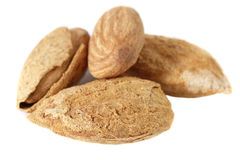 Roasted almonds Stock Images