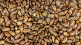 Roasted almonds in loose. Can be used as a background or wallpaper and for other possibility or to modify to your taste Stock Photos