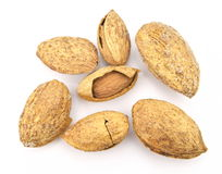 Roasted almonds in the shell Stock Photo