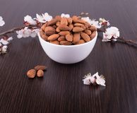 Roasted almonds in white porcelain bowl Royalty Free Stock Images