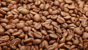 Roasted Arabica coffee beans background low angle. Roasted brown Arabica coffee big beans background pattern, close up, low angle view Royalty Free Stock Photography