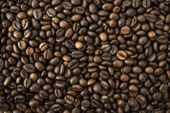 Roasted arabica coffee beans background. Roasted arabica coffee beans texture and background Stock Photos
