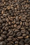 Roasted arabica coffee beans background. Roasted arabica coffee beans texture background macro closeup Royalty Free Stock Image