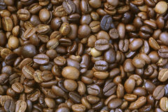 Roasted arabica coffee beans Royalty Free Stock Photo