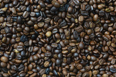 Roasted arabica coffee beans. Can be used as a background Stock Photography