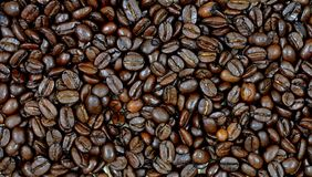 Roasted arabica coffee beans for italian espresso. Closeup to dark roasted brown coffee beans of arabica sort, used for preparation of italian espresso Stock Photos