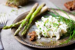 Roasted asparagus with cream cheese and fresh herbs spread. Stock Image