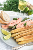 Roasted asparagus with salmon fillet Stock Photos