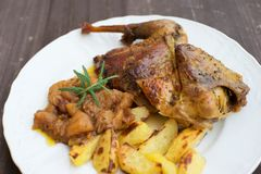 Roasted or baked Guinea fowl served with baked potatoes and sweet onion with apples and raisins. Stock Photography