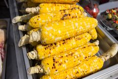 Roasted barbecue corn Stock Photo