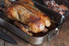 Roasted Barbery Duck stock photos
