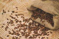 Roasted barley tea in the sack Stock Photos