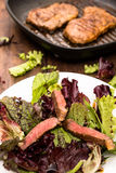 Roasted beef with lettuce Royalty Free Stock Photos