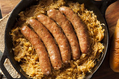 Roasted Beer Bratwurst with Saurkraut Stock Photography