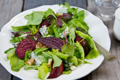 Roasted Beetroot with Blue cheese salad Royalty Free Stock Photos