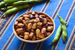 Roasted Broad Beans (lat. Vicia Faba) Royalty Free Stock Images
