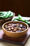 Roasted Broad Beans Royalty Free Stock Photos