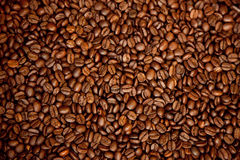 Roasted brown coffee beans, can be used as a background and text Stock Photos
