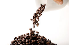 Roasted brown coffee beans. Falling from cup Isolated  in white background Royalty Free Stock Photography
