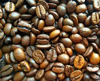 Roasted brown coffee beans texture background royalty free stock photos
