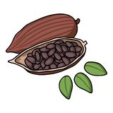 Roasted cacao beans icon in cartoon style isolated on white background. Herb an spices symbol stock vector illustration. Stock Photos