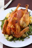 Roasted capon Royalty Free Stock Image