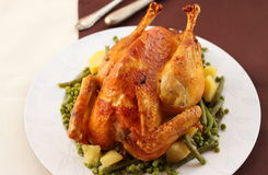 Roasted capon. Delicious roasted capon filed with truffles, plums and chestnuts stock photo