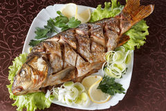 Roasted carp fish with vegetables entirely. Traditional Christmas menu. Royalty Free Stock Images