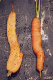 Roasted carrots. In an old pan Stock Images