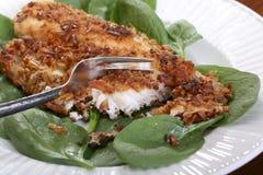 Roasted Catfish Filets Stock Images