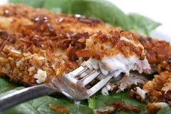 Roasted Catfish Filets Royalty Free Stock Photo