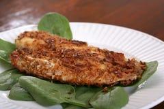 Roasted Catfish Filets Royalty Free Stock Photography