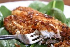 Roasted Catfish Filets Royalty Free Stock Photos