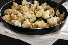 Roasted cauliflower Royalty Free Stock Photography