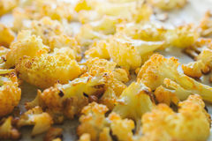 Roasted cauliflower florets. On a baking sheet Royalty Free Stock Photography