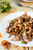 Roasted chanterelle mushrooms on a white plate Royalty Free Stock Photography